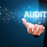 freebie-lead-magnet-audit